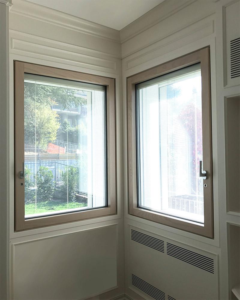 Защитные окна GINKO